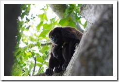 Nicaragua 2012-08-16 069