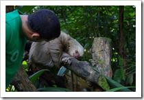 Costa Rica 2012-09-21 053