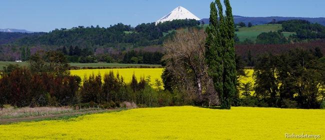 Chili 2013-11-03 022
